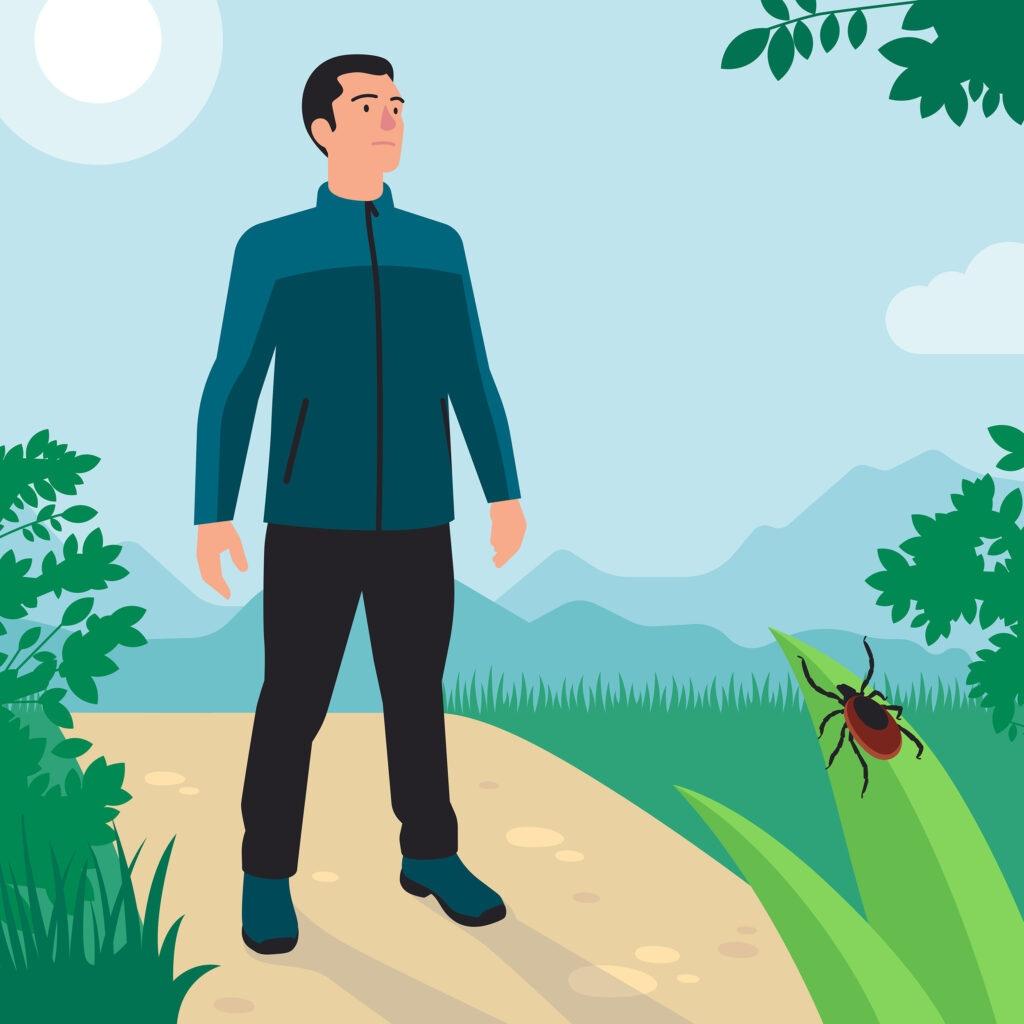 Protection contre les tiques avec des vêtements longs