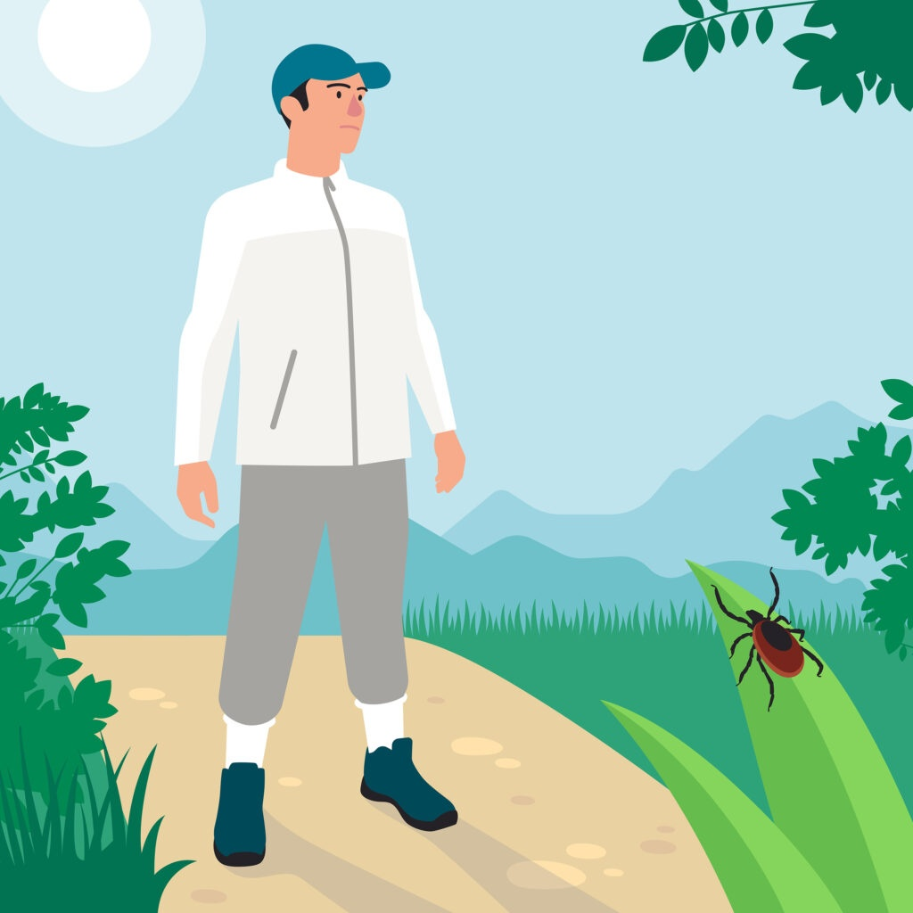 Protection contre les tiques avec des chausettes hautes